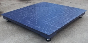 Explosion Proof 1000kg 2000kg 3000kg Electronic Industrial Floor Weighing Scale