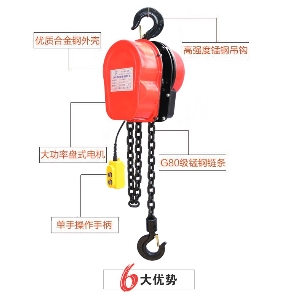 Hot sale factory direct price good Quality 1ton 2ton dhs electric chain hoist