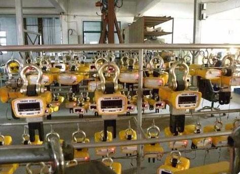 China Crane Scales manufacturers4.jpg