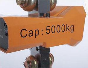 China Crane Scales manufacturers11.jpg