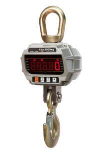 China Crane Scales manufacturers29.jpg