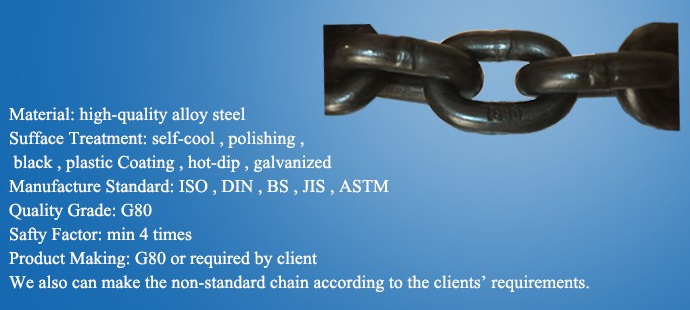 China G80 Alloy Load Chains manufacturers26.jpg