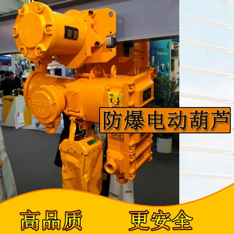Explosion-proof Electric Chain Hoists15.jpg